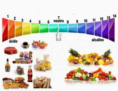 rafael bolio bermudez dieta crash